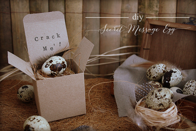 Preciously Me blog : DIY - Secret Message Egg